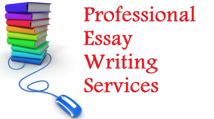 Essay Writing – How to Write Business Essay?