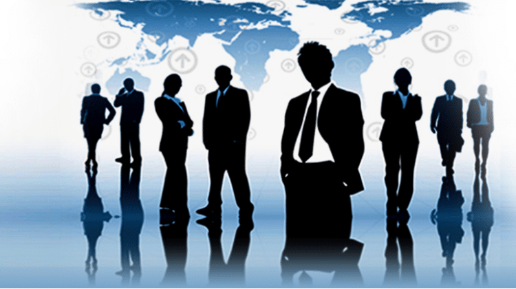 Discuss Human Resource Information System in Detail
