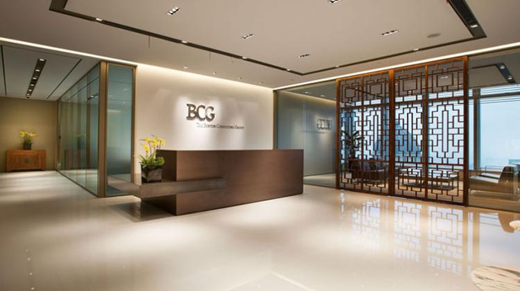 Explain Boston Consulting Group Matrix in Detail (BCG)