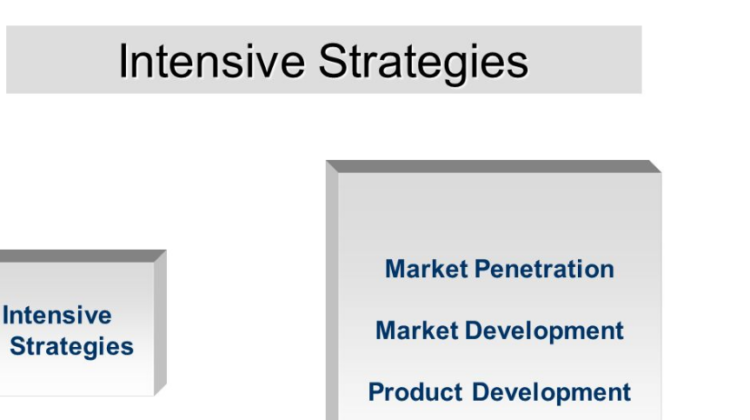 Intensive Strategy Definition | Types of Intensive Strategies