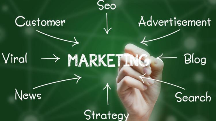 Types of Target Marketing Strategies