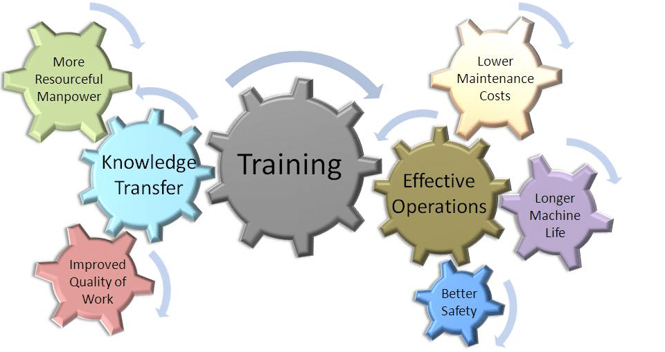 development in work environment Training and development managers oversee staff and plan, direct, and coordinate programs to enhance the knowledge and skills of an work environment about this.