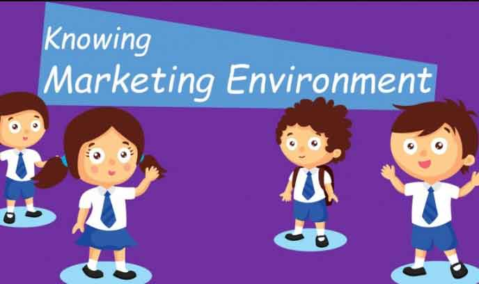 Micro and Macro Marketing Environment