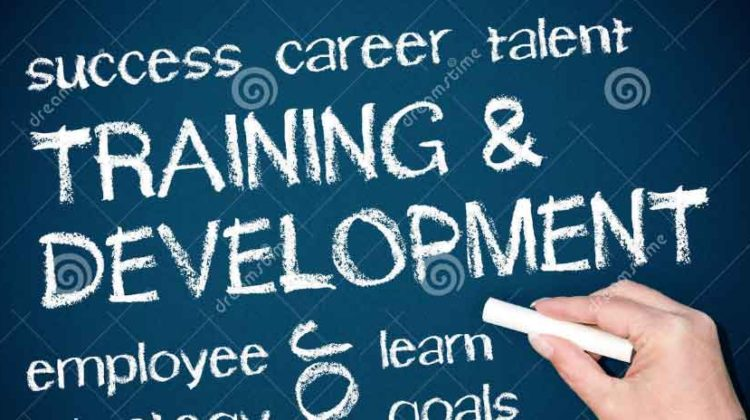 What are the Methods of Training and Development in HRM