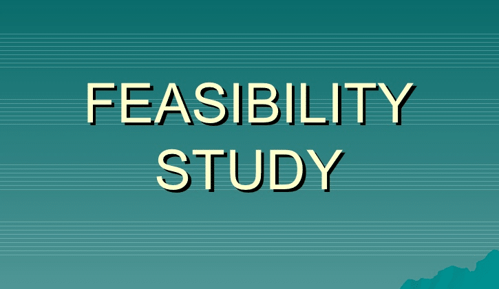 Feasibility Assessment & Business Ideas