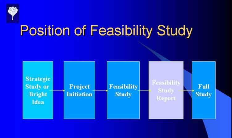 Sample Feasibility Study
