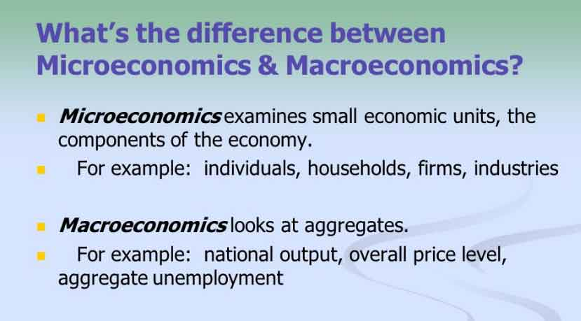 advantages and disadvantages of microeconomics
