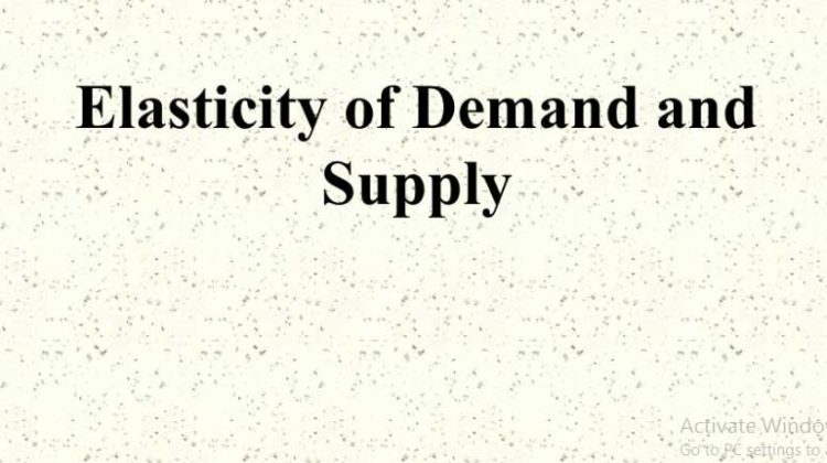 Price Elasticity of Demand and Supply | Graph & Examples
