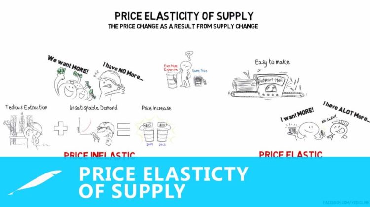 Elasticity of Supply Definition and Ways to Calculate it