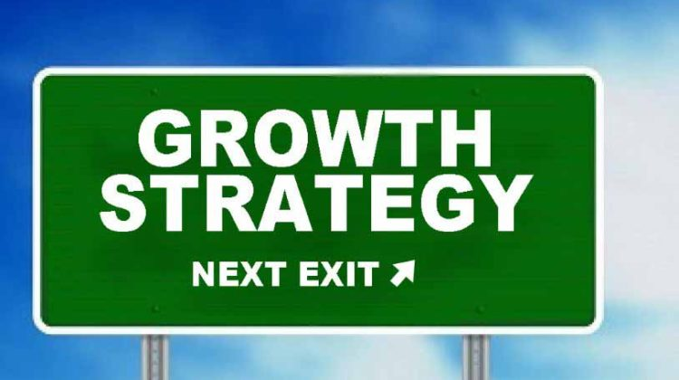 14 –  Small Business Growth Strategies for Entrepreneurs
