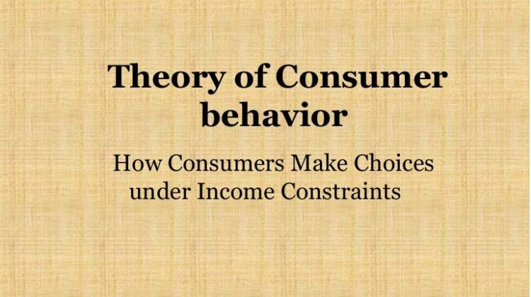 Theory of Consumer Behavior – Definition and Approaches