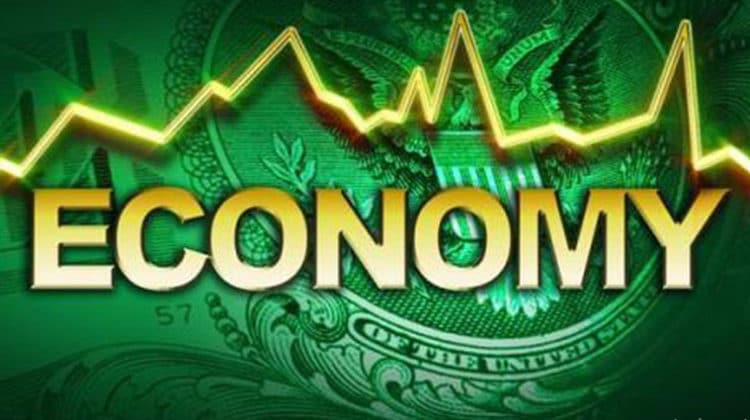 What is Economy | Definition & Basic Concepts