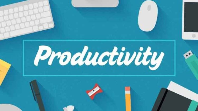 Productivity Definition | Formula | Types & Example