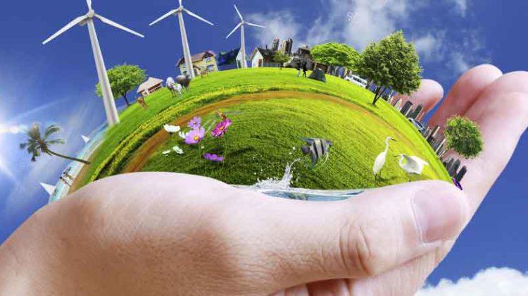 6 – Environment Friendly Business Ideas for Entrepreneurs
