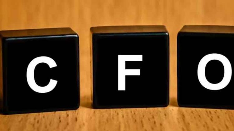 Chief Financial Officer: Helping to Improve Economic Performance